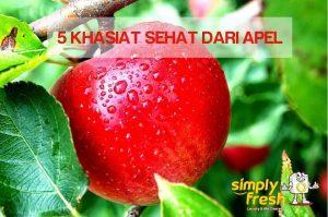 5 Khasiat Sehat Dari Apel