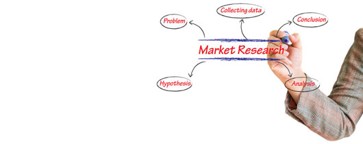 Pentingnya Riset Pasar Sebelum Memulai Bisnis