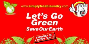 Franchise Laundry Kiloan Go Green