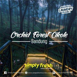 Tanaman Anggrek, Orchid Forest Cikole Destinasi Wisata Kota Bandung